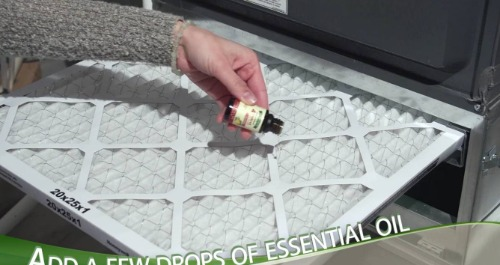 Essential oil used on an air filter.