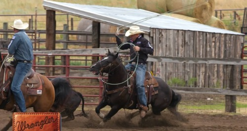 Man on running horse.
