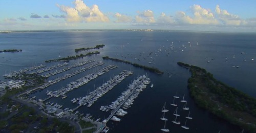 Aerial view of marine dock.