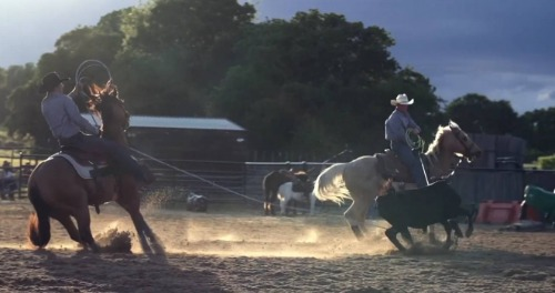 Cowboy lassoing a calf.