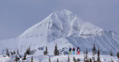 Skiers looking at a snow peak.